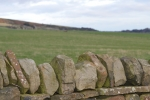 Fields and stone walls around Penistone and Stocksbridge